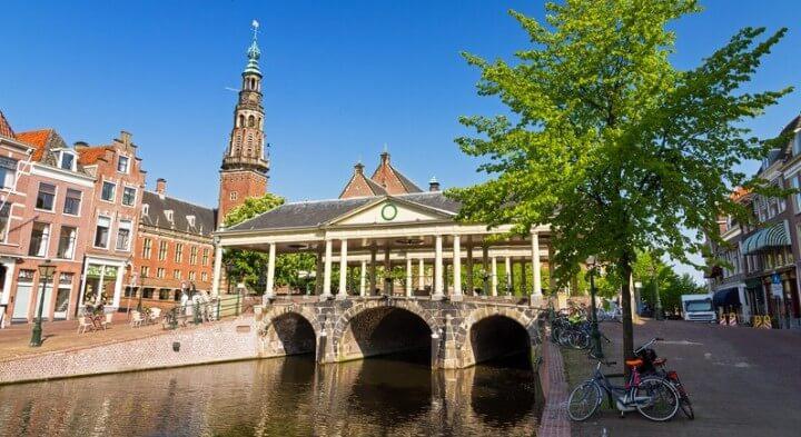Image for Leiden
